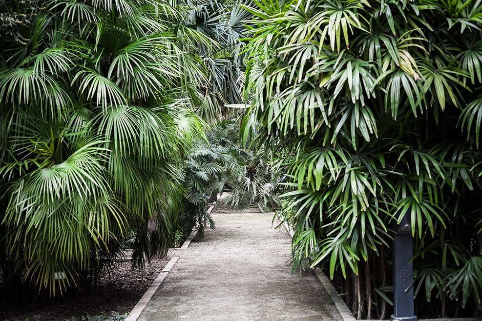 Parques y Jardines de València