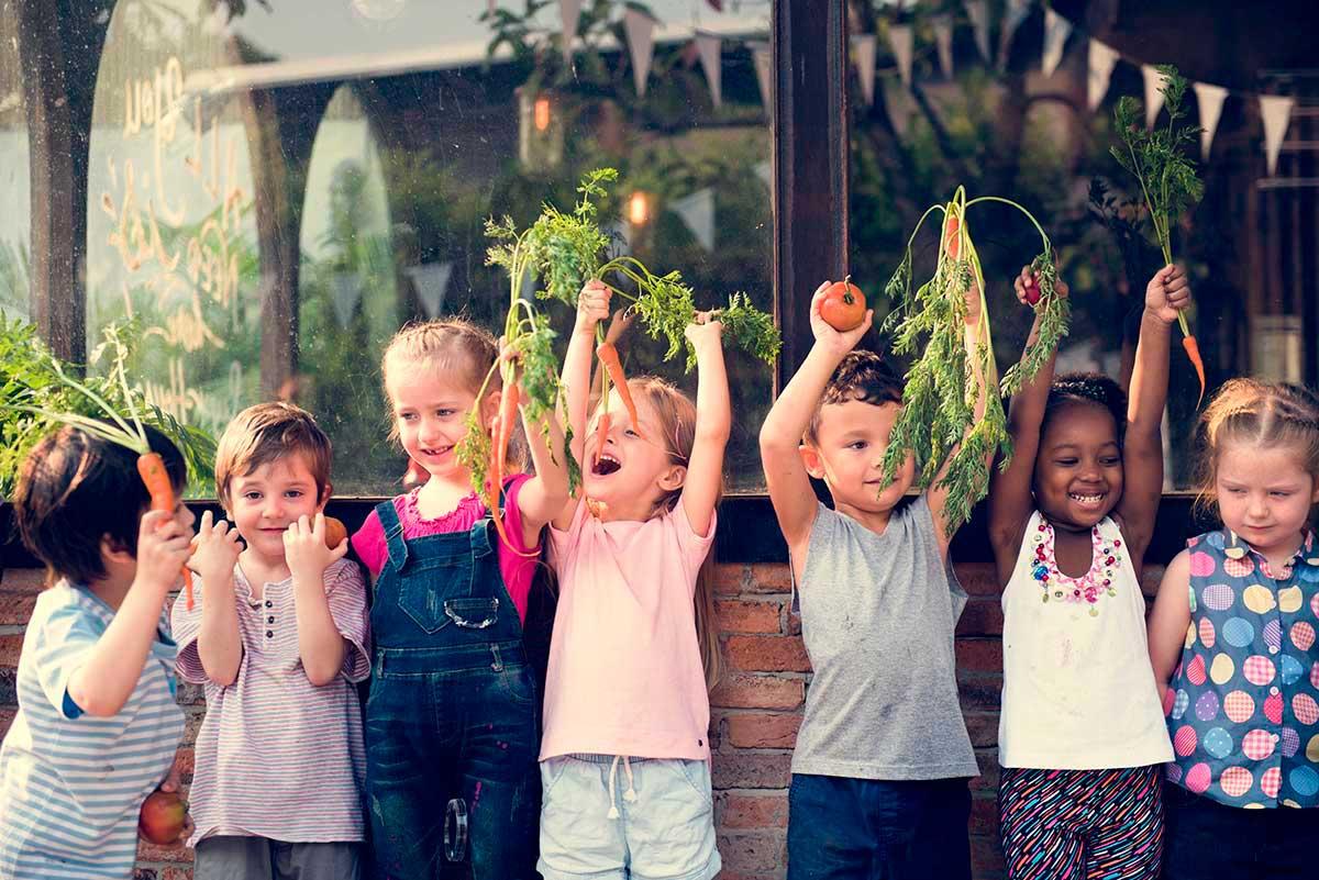 Alimentación y hábitos saludables. Sabor y Salud