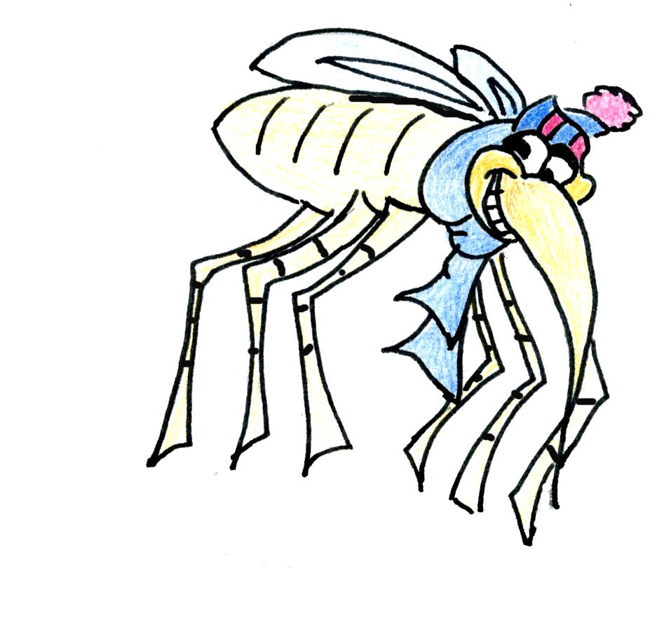 A raya con el mosquito de las rayas